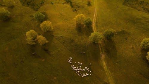 photo aérienne prise avec le phantom 4 pro