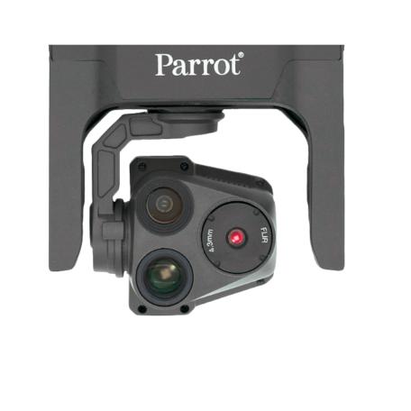 parrot usa 2